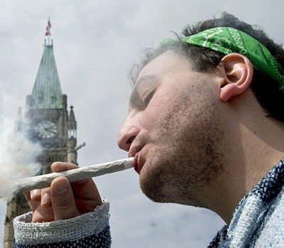 POT PARLIAMENT