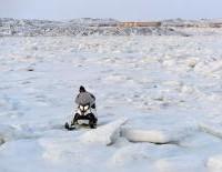 Nunavut Hunger 20150123