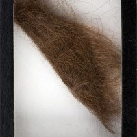 john-lennon-hair-auction