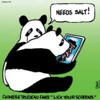 Chinese fans of Justin Trudeau are told to lick their screens