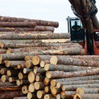 softwood-lumber-20170425