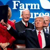 EUA: Apoyos a Trump son mayores en zonas rurales